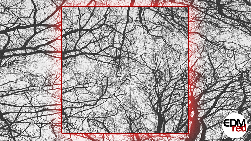 Photo of Sebastian Mullaert – You're An Orchestra In The Cosmos (Joris Voorn Remix)