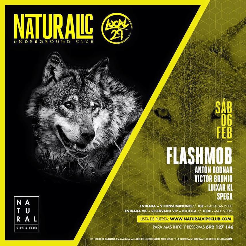 flashmob-EDMred-1 Tercera edición de Naturalic Club en Málaga con Flashmob