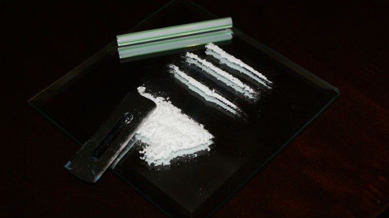 cocaina-EDMred Lo mejor de EDMred en 2016