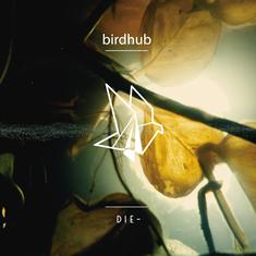 Cover Birdhub presentan su primer álbum 'DIE-' en Sofa Tunes