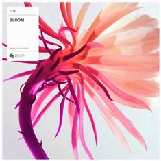 EDX-Bloom-EDMred EDX - Bloom