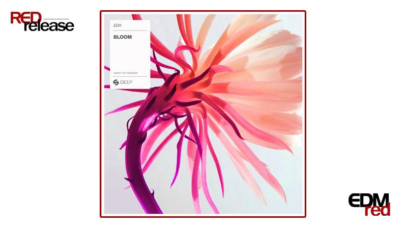 Photo of EDX – Bloom