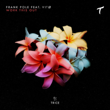 Artwork_preview-1 Frank Pole feat. Vitø - Work