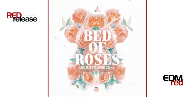 Afrojack – Bed Of Roses ft. Stanaj