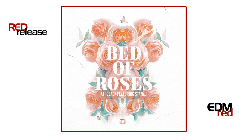 Photo of Afrojack – Bed Of Roses ft. Stanaj
